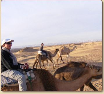 safari_trippp